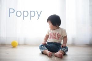 HANDSLOVE00001 300x200 [兒童攝影 No2] Poppy/1Y